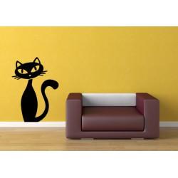 El gato observador