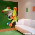 La rana colorida