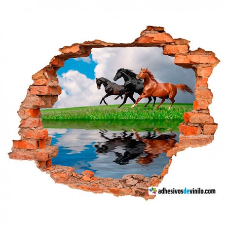 Vinilos 3d - caballos reflejo