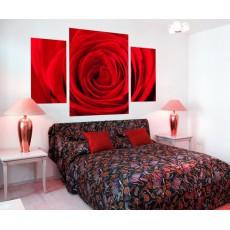 mural partido rosa roja